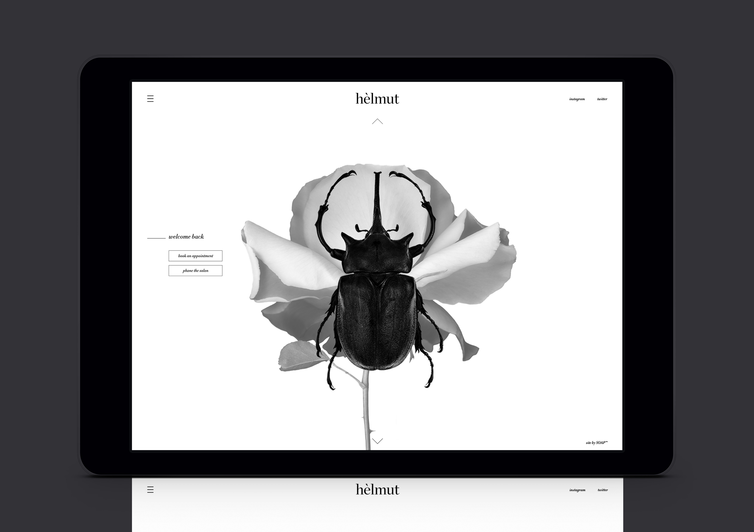 Helmut Salon website returning customer screen showing scarab beetle and rose overlaid